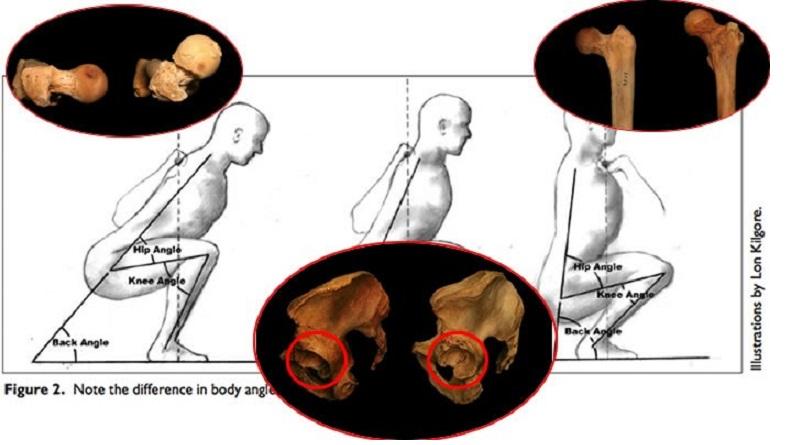 Come l'anatomia dell'anca influenza lo squat