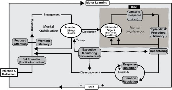apprendimento-motorio