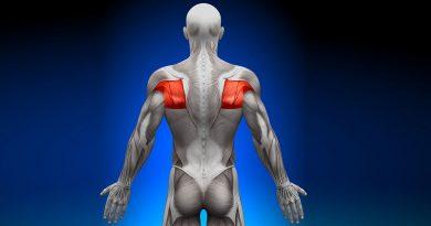 Grande Rotondo: anatomia e biomeccanica